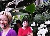 Prekmurje-AKŽ Sevnica-Orhideje