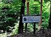 Gozdna učna pot Prekmurje